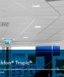 Rockfon Tropic
